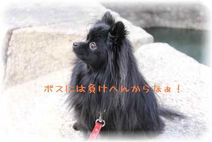 大阪城満喫13