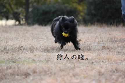 みーちゃん撮影3