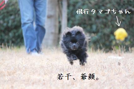 みーちゃん撮影2