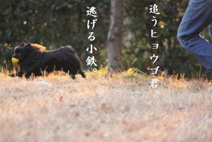 みーちゃん撮影8