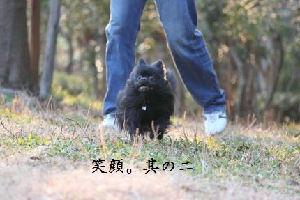 みーちゃん撮影10