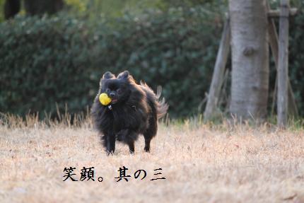 みーちゃん撮影11