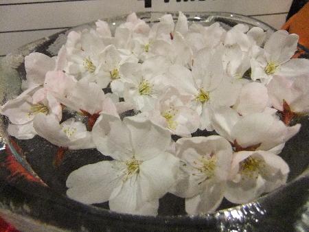 家でお花見2
