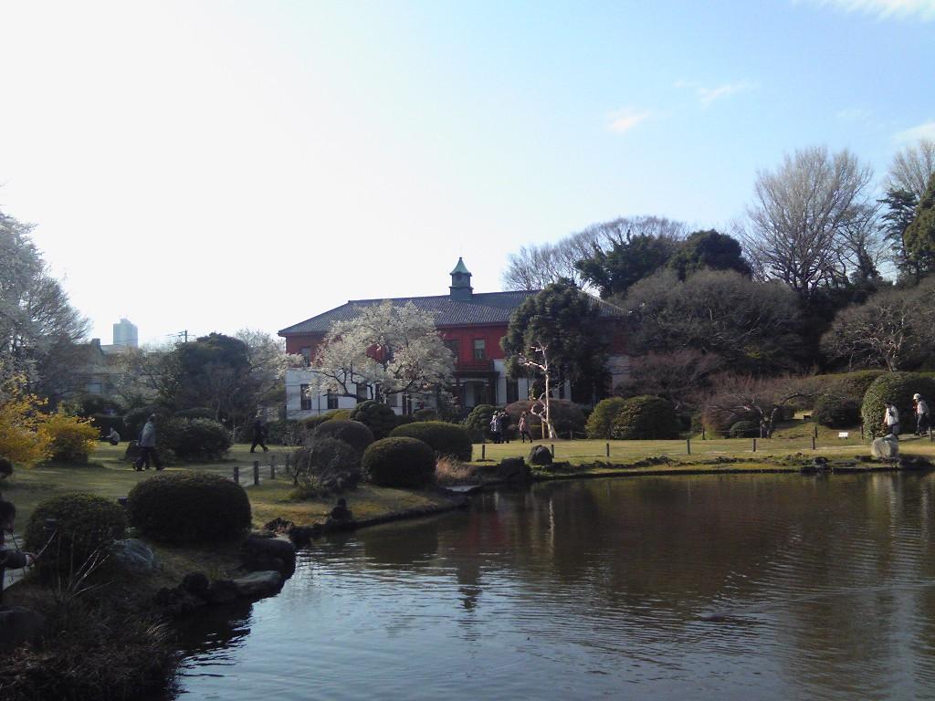 小石川植物園2012#3