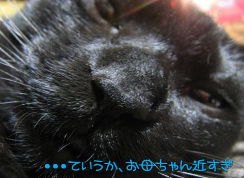 039_Rのコピー