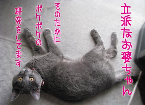 033_Rのコピー