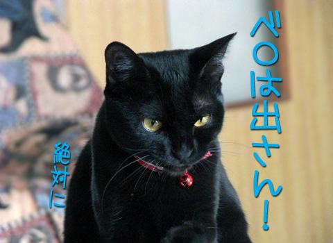 029_Rのコピー