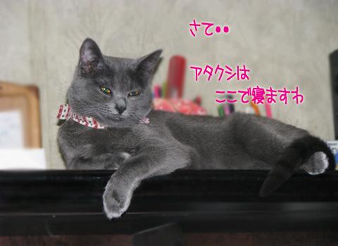 052_Rのコピー