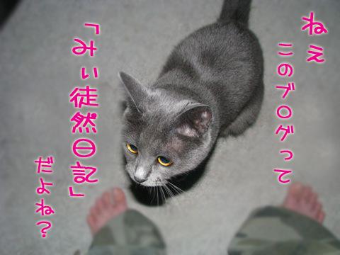 096_Rのコピー