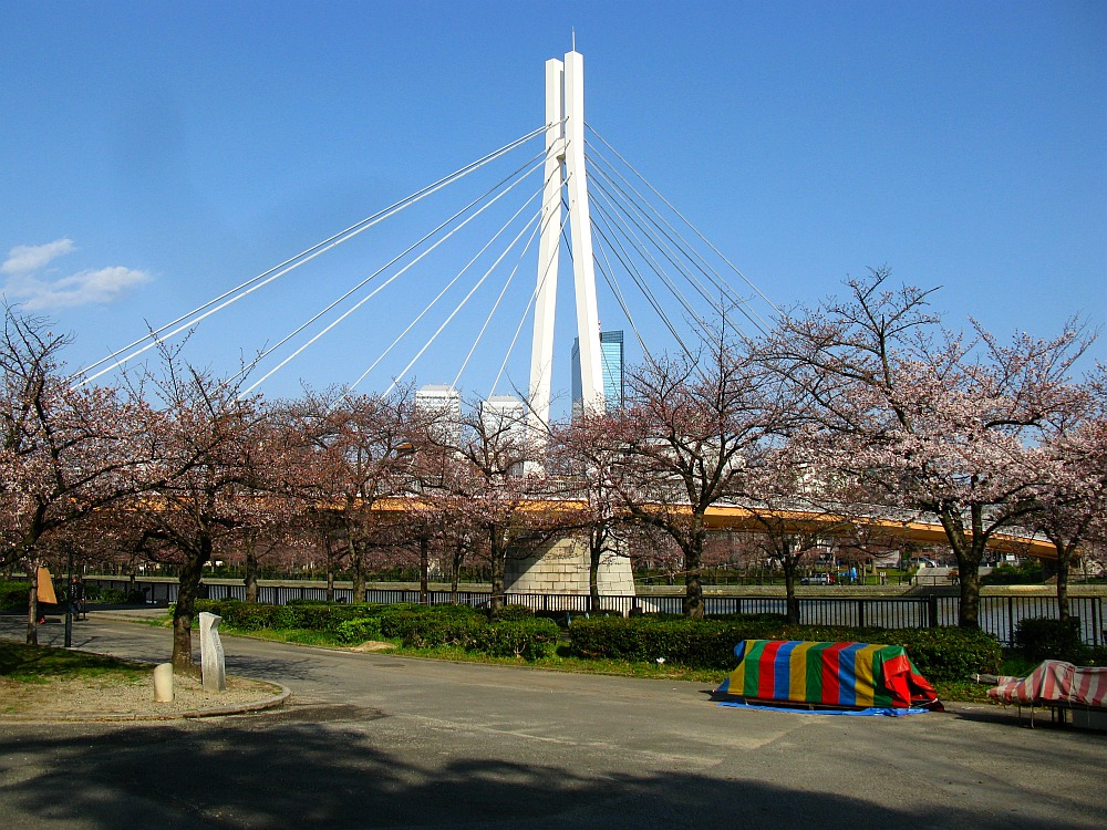2012-04-04 069