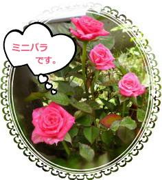 花ブ624-8