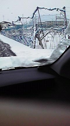 1月30 雪 (4)
