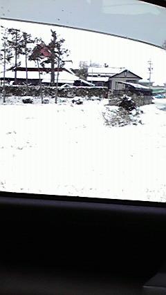1月30 雪 (2)