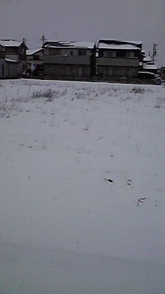 1月30 雪 (3)
