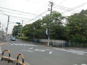 八坂神社周辺