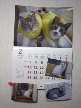 IMG_2283レモンちゃんと未来ちゃん