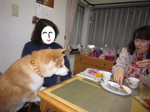 IMG_2431うめちゃん