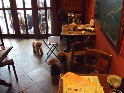 モンスーンカフェ 待つ3ワン