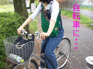 自転車に20100421