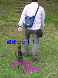 必死20100421