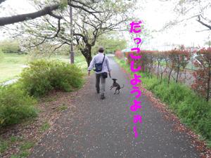 だっこ~20100421