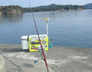 taso-hamajima-3-20 003