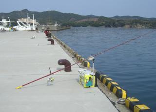 taso-hamajima-3-20 006
