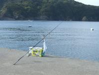 taso-2010-4-10 003