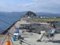 taso-2010-4-10 002