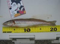 shicoku-2010-5-2 009