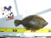 shicoku-2010-5-2 022