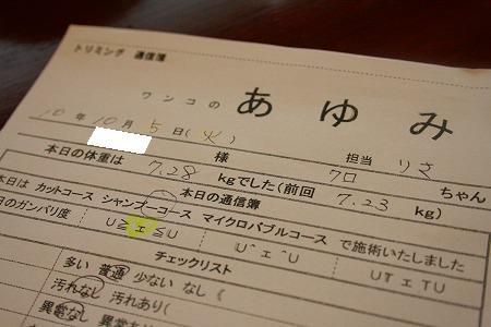 IMG_37760.jpg