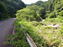 矢作ダムへの道2