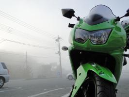 霧が……(泣)