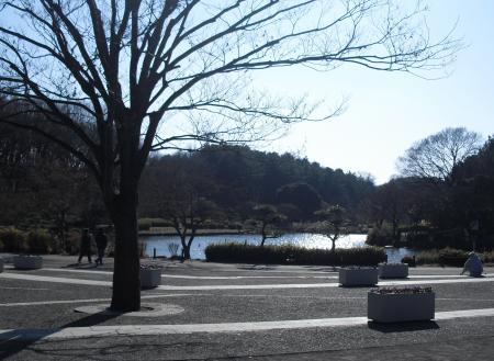 公園散歩 1_convert_20120126215231