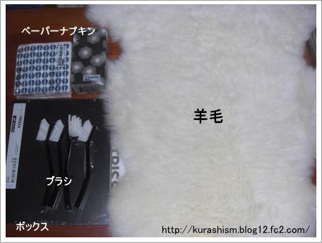 100108c.jpg