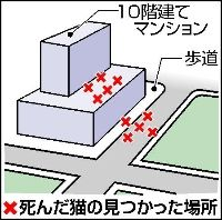 20_20100313-074600-1-N.jpg