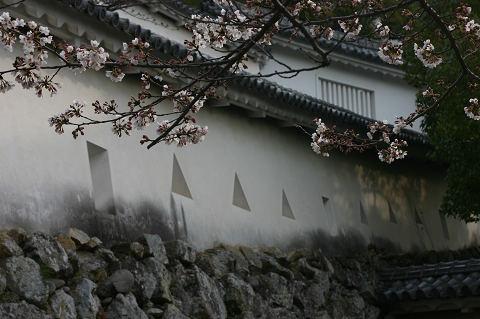 姫路城と言えばこの塀です