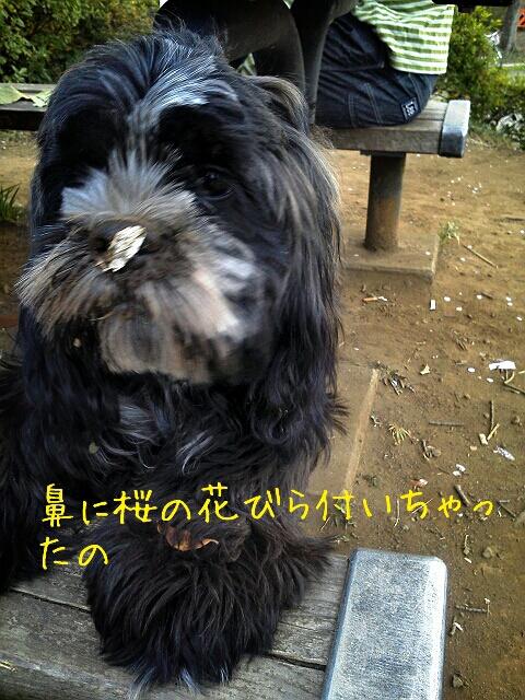 fc2_2013-03-24_20-15-46-605.jpg