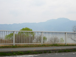 2010041502.jpg