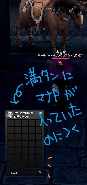 mabinogi_2010_04_30_036.jpg