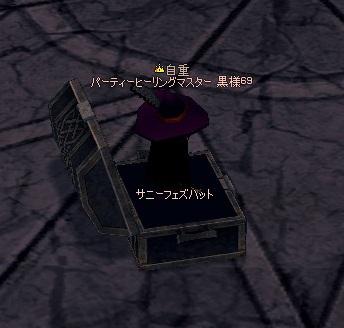 mabinogi_2010_05_05_008.jpg