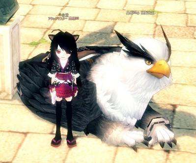 mabinogi_2010_06_17_002.jpg