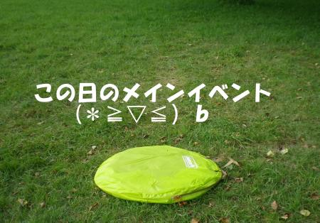 2013-08-29-1+004_convert_20130829190718.jpg