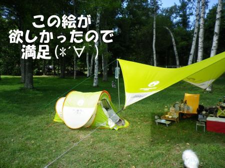 2013-08-29-1+009_convert_20130829190848.jpg