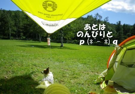 2013-08-29-1+011_convert_20130829190941.jpg