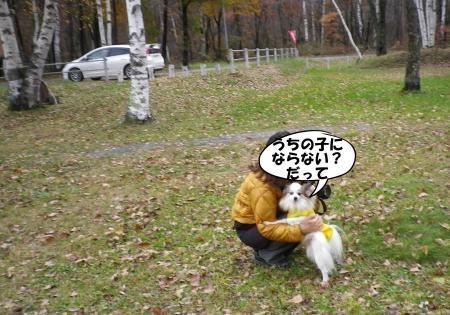 2013-10-27-1+028_convert_20131031163253.jpg