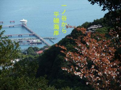 mini_14_hiraiso_DSCF5084.jpg