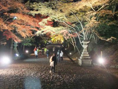 mini_14_sakamotohiyosi_DSCF0437.jpg