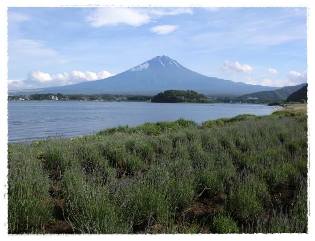 どぉ~~~~んっと富士山よっ!!!
